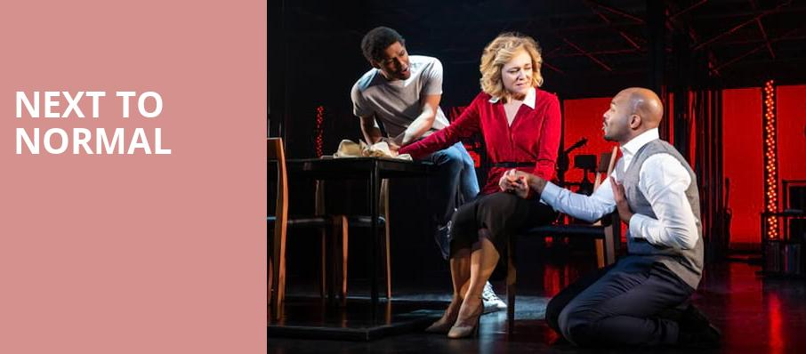 Next To Normal, Eisenhower Theater, Washington